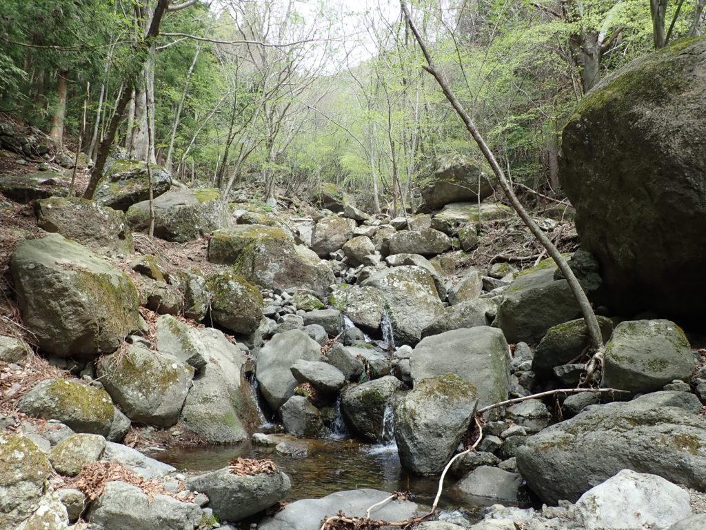 西湖の源流